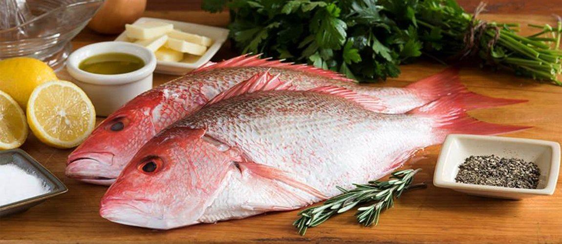 Ikan segar dijual online di Surabaya