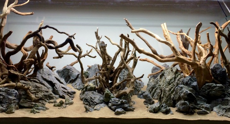 Hardscape Aquascape