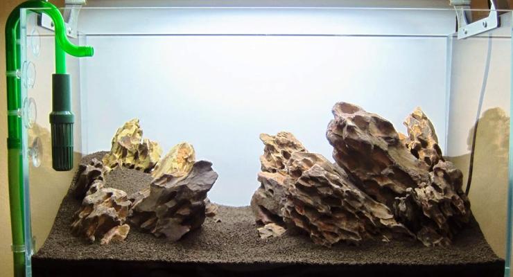 Jenis & Fungsi Substrat Aquascape