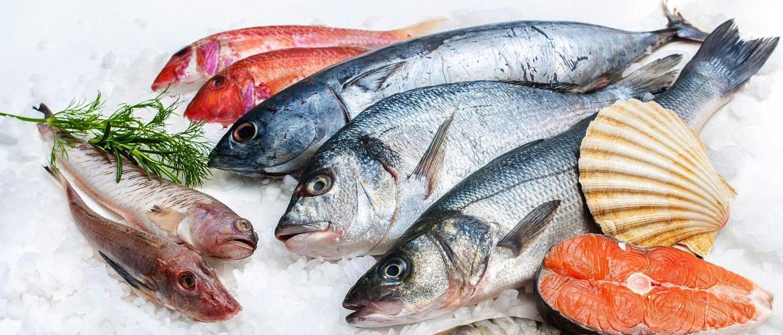 Ikan segar seafood kota Surabaya 1