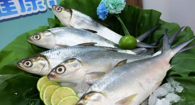 Pesan online Ikan Bandeng Surabaya