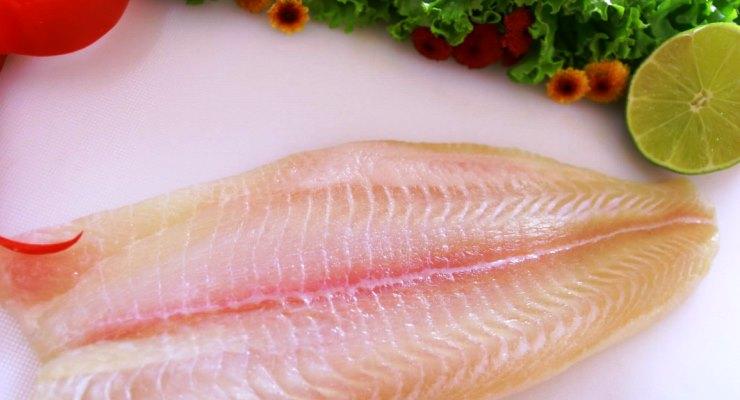 Gizi Ikan Dori Patin