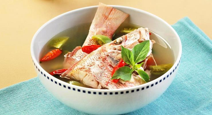 Tips Budidaya Ikan Kakap