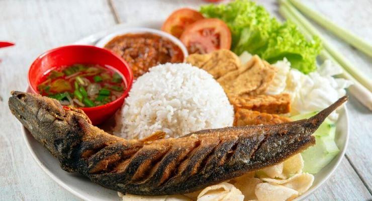Cara Merintis Usaha Ikan Lele Toko Online Surabaya