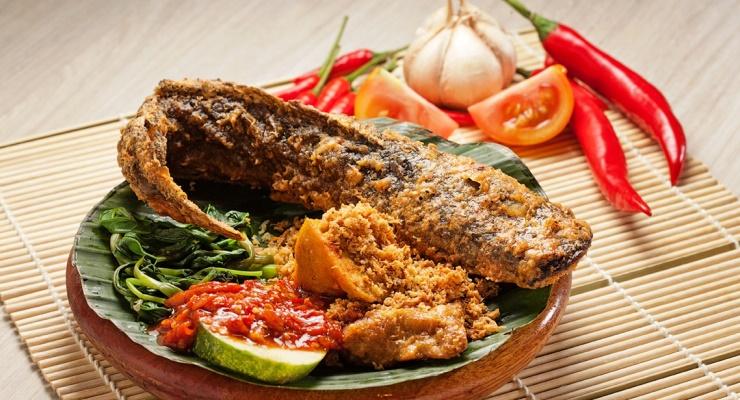 Tips Memulai Usaha Ikan Lele Taman Air Surabaya